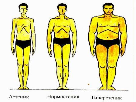 Таблица веса в соотношении с